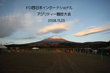 2008-11-23-001360.jpg