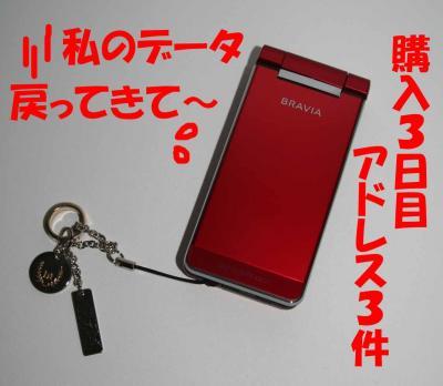 022605_convert_20090226235245.jpg