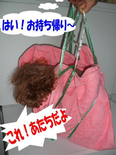 081509_convert_20080815014604.jpg