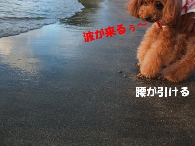 081708_convert_20080818010333.jpg