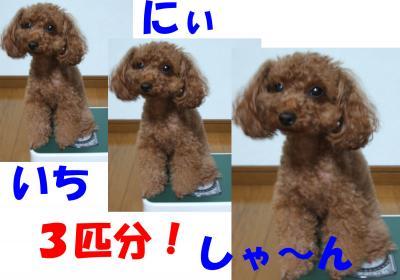 082601_convert_20080827005815.jpg