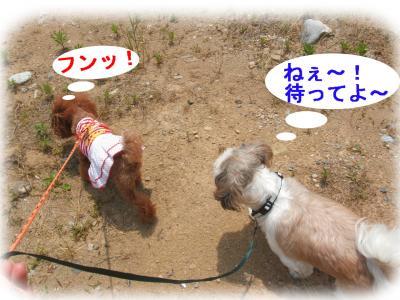 2_convert_20090618141908.jpg