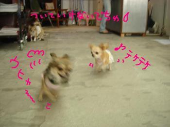20060921152357.jpg