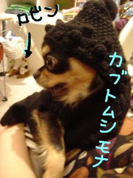 20061210015044.jpg