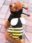 Beedogs2.jpg