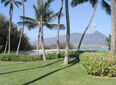 Brit_New-House-in-Hawaii13.jpg