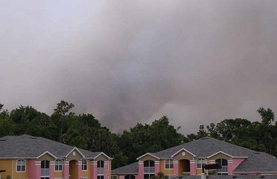Brush_Fire-in-My-Back-Yard2.jpg