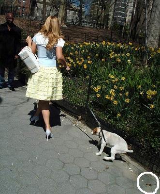Mariah_Jack_in-NY11.jpg