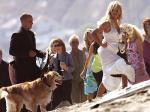 anderson_dogs_wedding_KellySlater.jpg