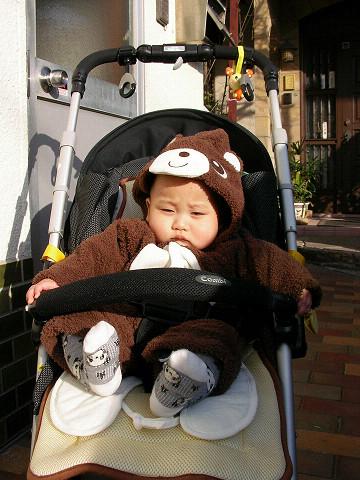 ソウスケ熊