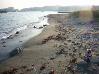 近所のしょぼい海岸にて