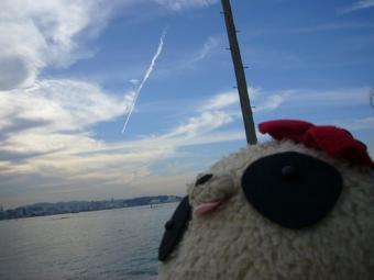 飛行機雲だわ~