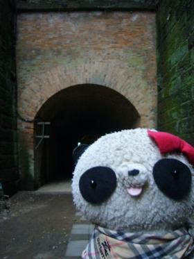 いたるところにトンネルが!