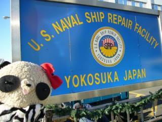 米軍横須賀基地だよ