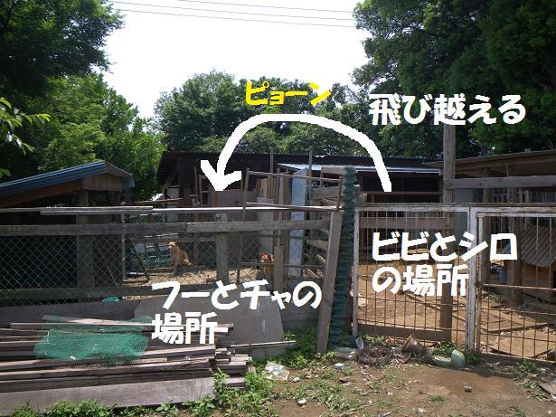 間宮 7'