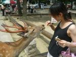 鹿とkazumi