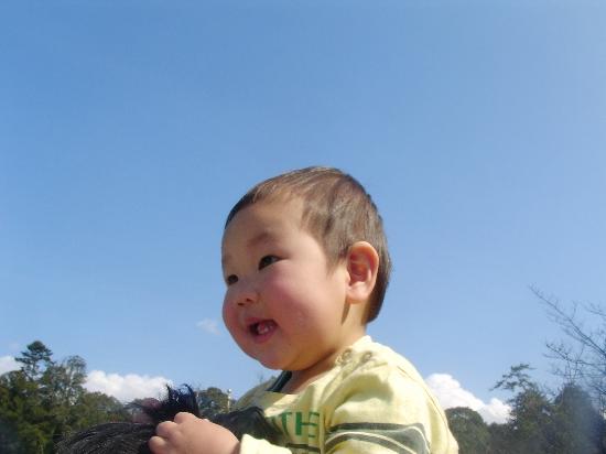 37kokofjirgeue_550x412.jpg