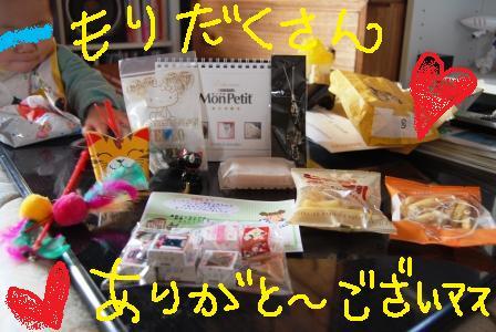 DSC_0001_20090324071746.jpg