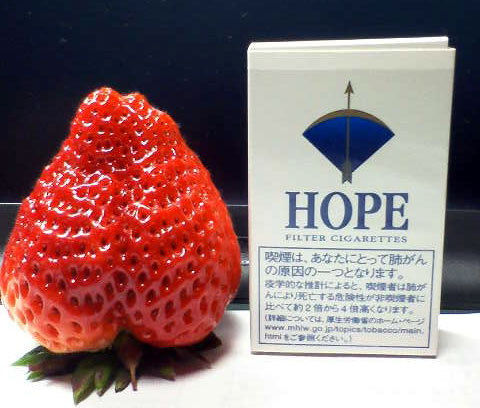 strawberry001.jpg