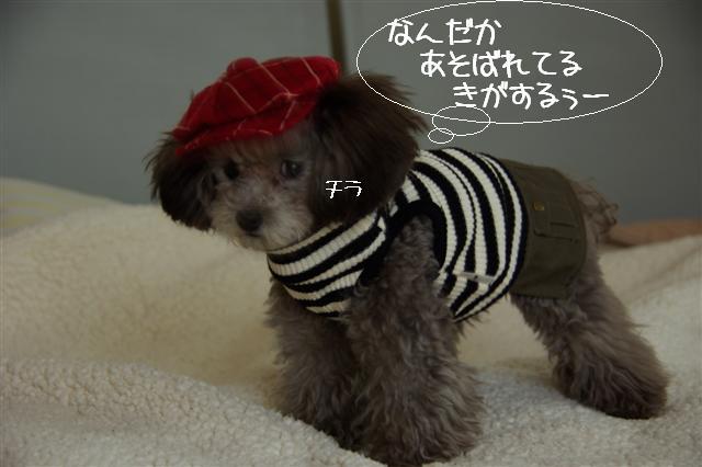 2008.10.31帽子 026 (Small)
