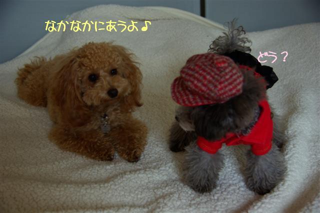 2008.10.31帽子 071 (Small)