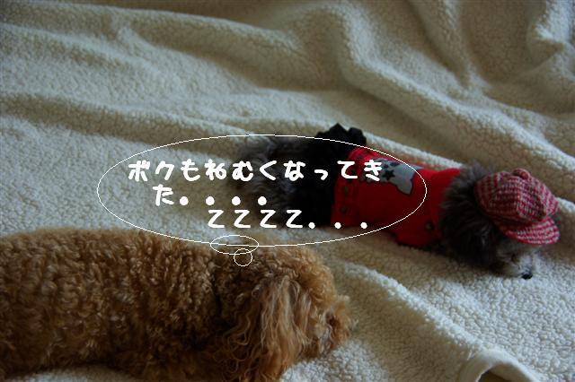 2008.10.31帽子 122 (Small)