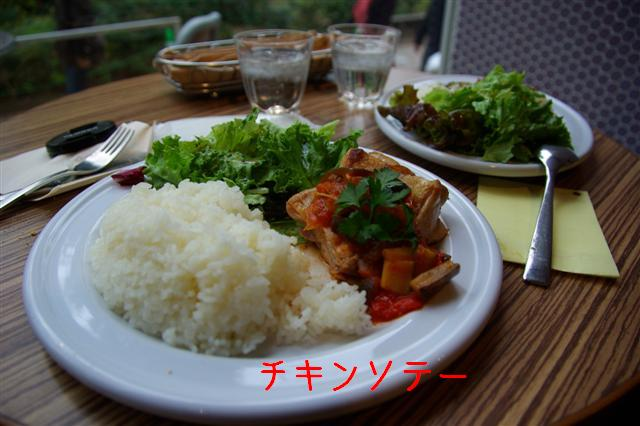 2008.11月横浜・国立・昭和記念公園 066 (Small)