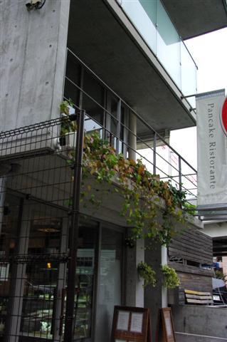 2008.11月横浜・国立・昭和記念公園 098 (Small)