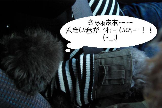 2008.12月豊橋帰省 251 (Small)