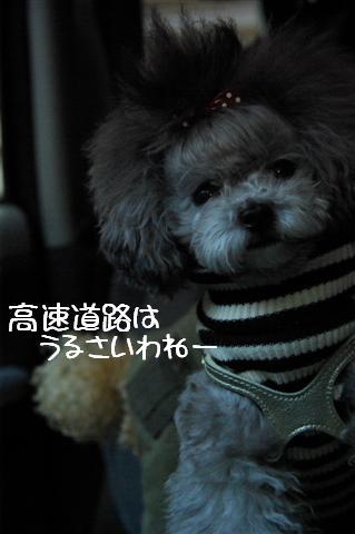 2008.12月豊橋帰省 290 (Small)