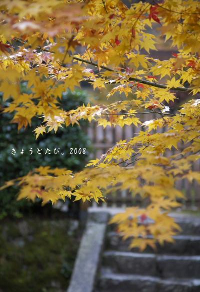 IMG_0068のコピー