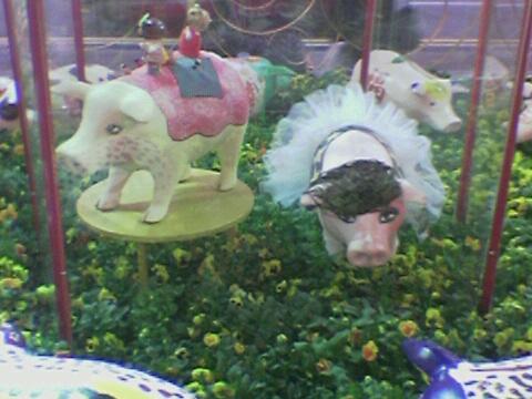 Pig(04).jpg