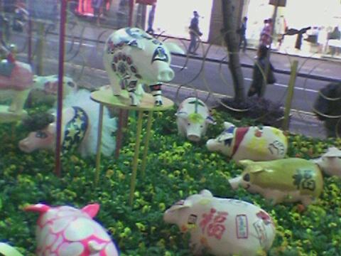 Pig(05).jpg