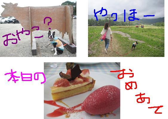 4_20090820205849.jpg
