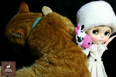 ハーバーとネコ