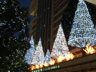 名駅ライトアップ横から.jpg