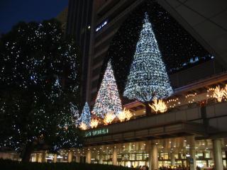 名駅ライトアップ横から1.jpg
