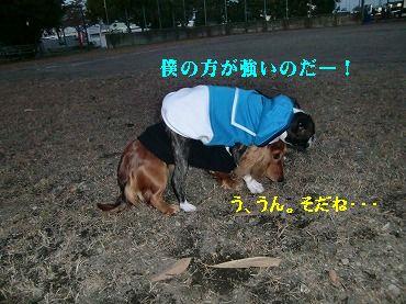 CIMG5983.jpg