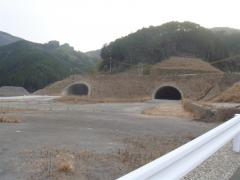 2010011104