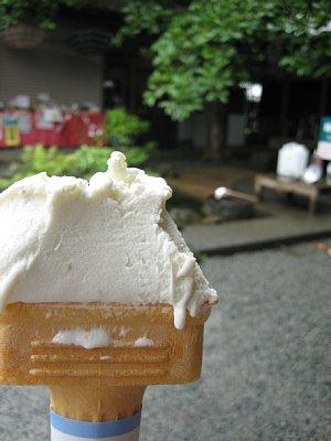 豆腐わさびアイス