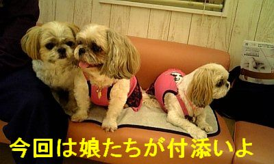 oyako_20081023_1