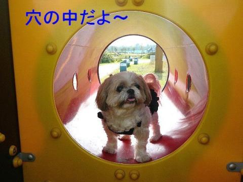 bibi_20080916_2