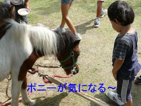 riku_20080917_1