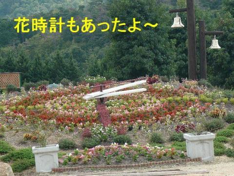 hana_20080917_4