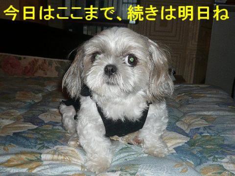 mint_20080915_4