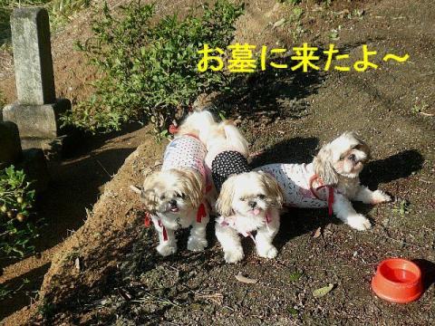 oyako_20080921_1