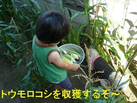 riku_20080922_1