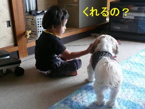 mint_20080926_3