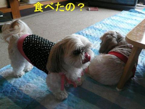 mint_20080926_8