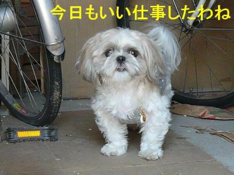 mint_20080930_5